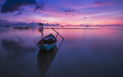 Как обрести покой в неконтролируемом и непредсказуемом мире