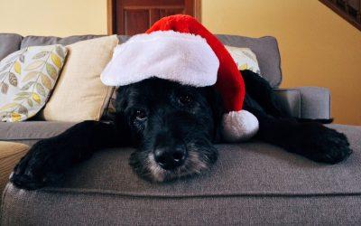 Сохраняя дух Рождества