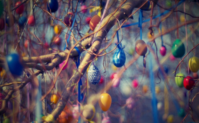 Расписные пасхальные яйца висят на ветках