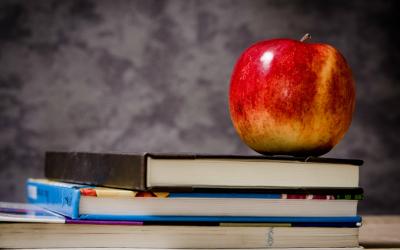 Образование: почему так важно его продолжать
