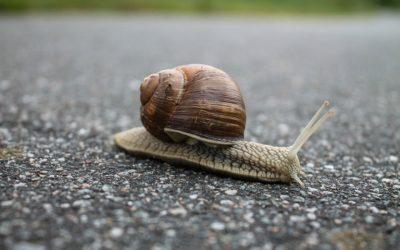 8 цитат, которые помогут понять, как важно терпение